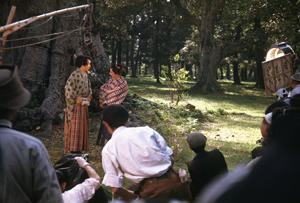 「桜御殿」(1948/マキノ眞三監督)撮影風景[写真提供:衣川太一]